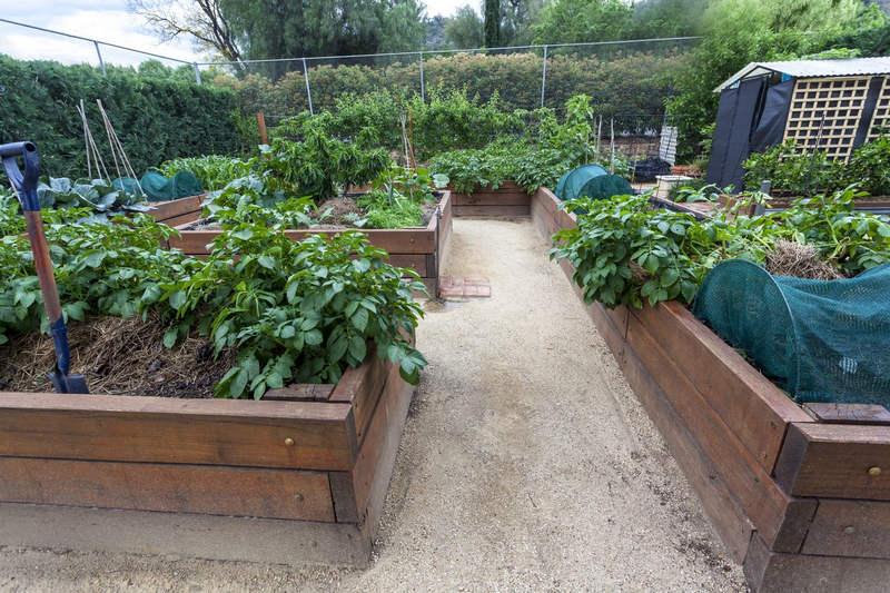 Как сделать грядки на своём садовом участке