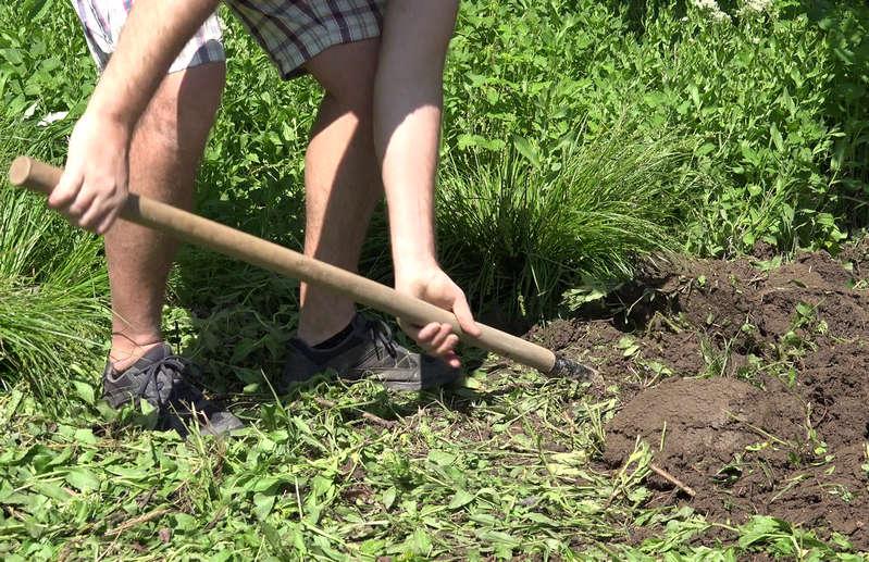 как правильно копать огород лопатой весной