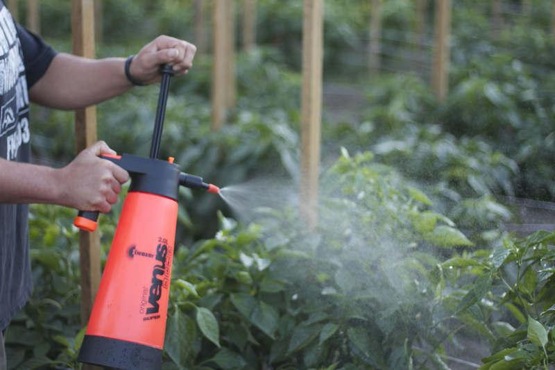 Как выбрать садовый опрыскиватель на дачу критерии выбора и самые популярные модели